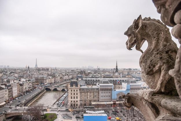Słynne kamienne demony gargulca i chimera z miastem paryż na powierzchni.