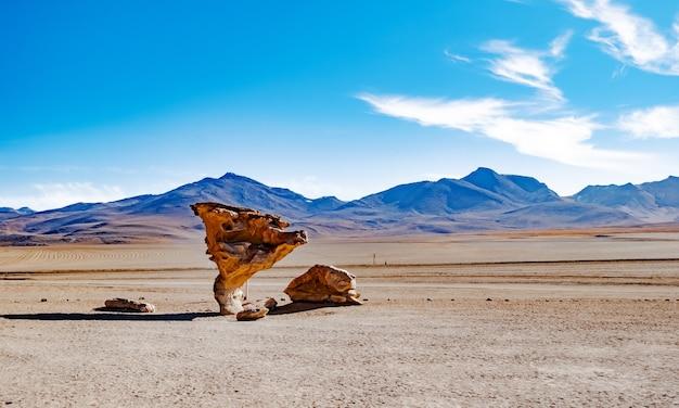 Słynny punkt orientacyjny kamiennego drzewa na górskiej pustyni boliwijskiej