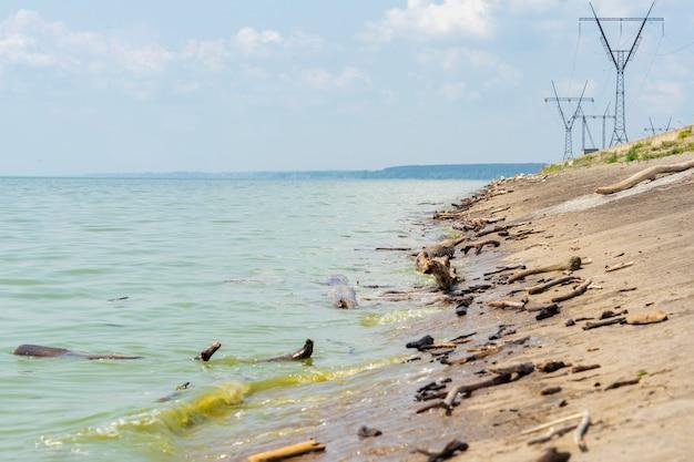 Śmieci przemysłowe i leśne leżą latem na brudnym wybrzeżu morza.