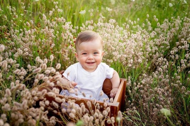 Śmiejąca się mała dziewczynka 7 miesięcy siedzi wśród trawy polowej w białej sukni, zdrowy spacer na świeżym powietrzu, widok z góry