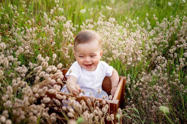 Śmiejąca się mała dziewczynka w wieku 7 miesięcy siedzi wśród trawy polowej w białej sukience, zdrowy spacer na świeżym powietrzu, widok z góry