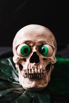 Śmieszna czaszka z zabawkarskimi oczami
