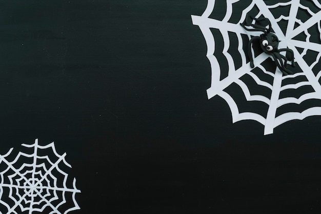 Śmieszny zabawkarski pająk na papierowej sieci
