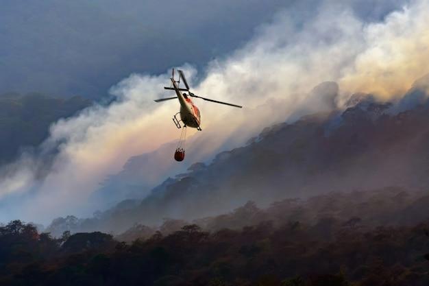 Śmigłowiec strażacki nosi wiadro z wodą, aby ugasić pożar lasu