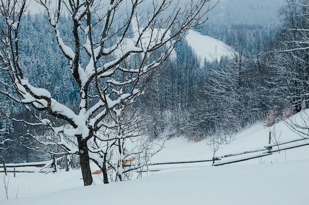 Śnieg stok wieś zima pochmurny krajobraz