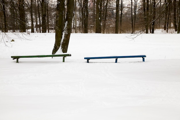 Śnieg w zimie