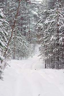 Śnieżna droga biegnąca przez las zimą, zimowy krajobraz