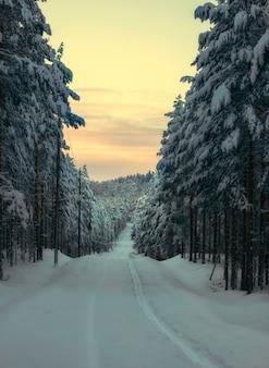 Śnieżna droga w lesie o zachodzie słońca na północy w zimie