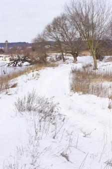 Śnieżna droga wzdłuż rzeki. drzewa