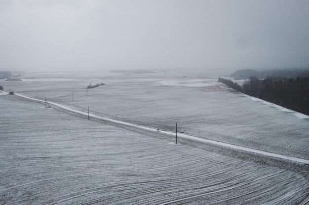Śnieżne pole w zimie