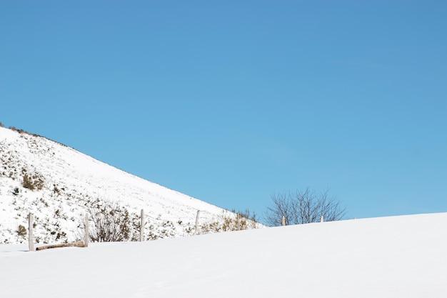 Śnieżny krajobraz z ogrodzeniem.