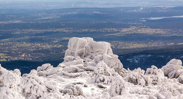Śnieżny krajobraz z zamarzniętym lasem w parku narodowym sierra de guadarrama, hiszpania