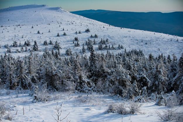 Śnieżny krajobraz, zaśnieżone góry. piękny zimowy krajobraz z pokrytymi śniegiem drzewami. zima w lesie