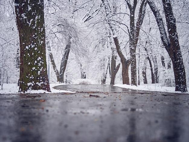 Śnieżny park zimowy z błotem pośniegowym na ścieżce