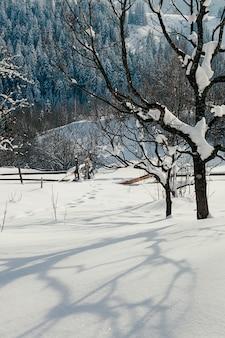 Śnieżny skłon wsi zimy pogodny krajobraz