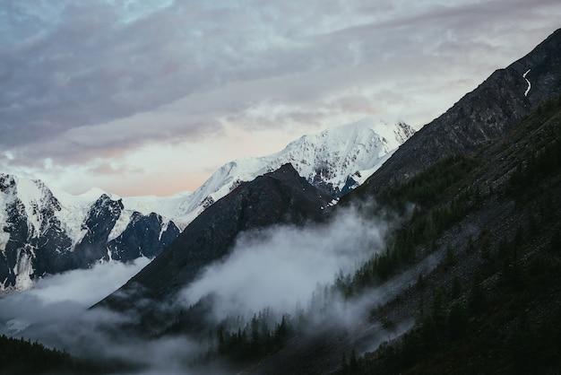 Śnieżny szczyt góry i niskie chmury wśród drzew na zboczu góry lasu pod zachmurzonym niebem świt.