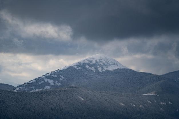Śnieżny szczyt góry pokryty lasem podczas koncepcji podróży i przygody w sztormowej pogodzie