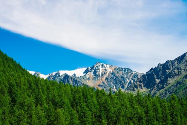 Śnieżny szczyt góry za zalesionym wzgórzem pod błękitnym jasnym niebem. skalista grań nad lasem iglastym. klimatyczny, minimalistyczny krajobraz o majestatycznej naturze.