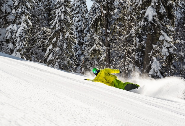 Snowboardzista rzeźba na stoku narciarskim na tle lasu w słoneczny zimowy dzień