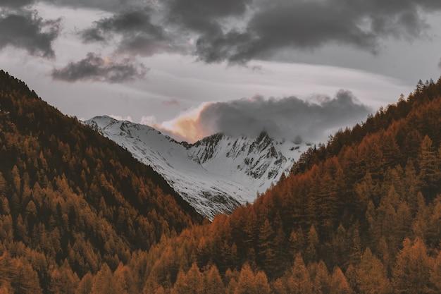 Snowy górski krajobraz