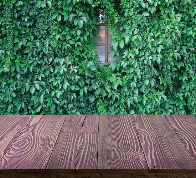 Soczysta zielona ściana hedera helix lub pnącze z liści bluszczu