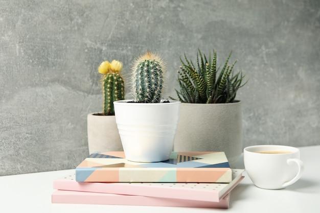 Soczyste rośliny, kawa i zeszyty na szarej powierzchni. rośliny domowe