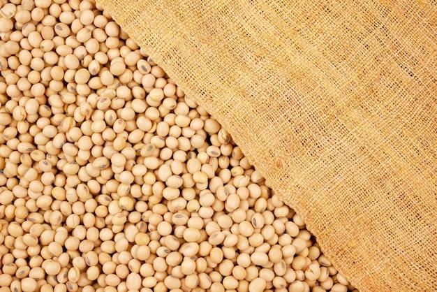 Soja, nasiona surowiec spożywczy, pyszne dania fasola ziarnista produkt rolny