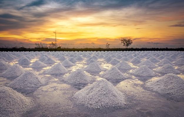 Solankowy gospodarstwo rolne w ranku z wschodu słońca niebem. organiczna sól morska. odparowanie i krystalizacja wody morskiej. surowiec soli przemysłowej. chlorek sodu.