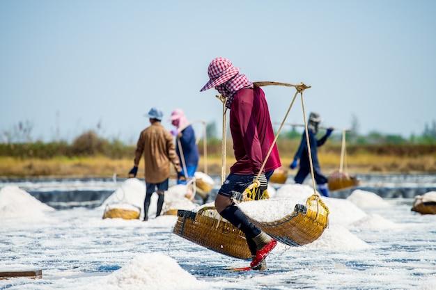 Soli rolnicy wspólnie zbierają sól w starym stylu