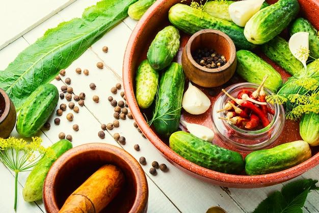 Solone domowe ogórki.proces gotowania.ogórek konserwowy.marynowane warzywa.preparat do kiszenia ogórków