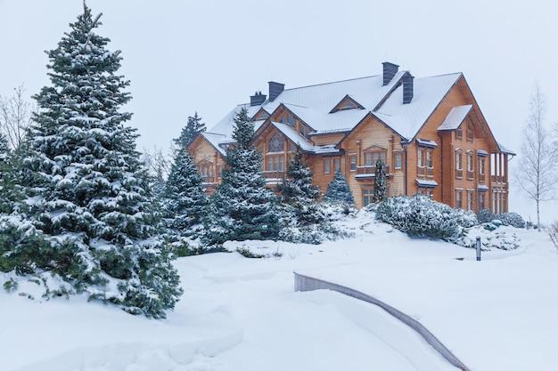 Sosna jest pokryta śniegiem w pobliżu domu w mezhyhiria. sosna na śniegu w pobliżu domu.