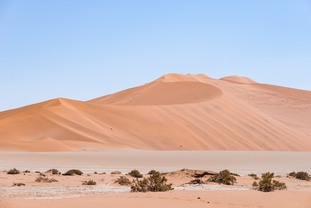 Sossusvlei namibia, majestatyczne wydmy. park narodowy namib naukluft, namibia