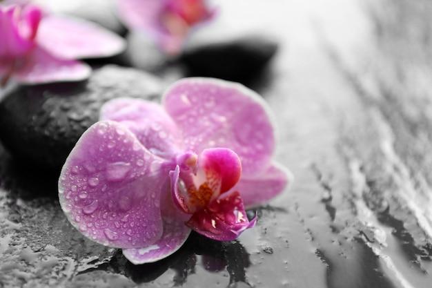 Spa kamienie i orchidee, zbliżenie