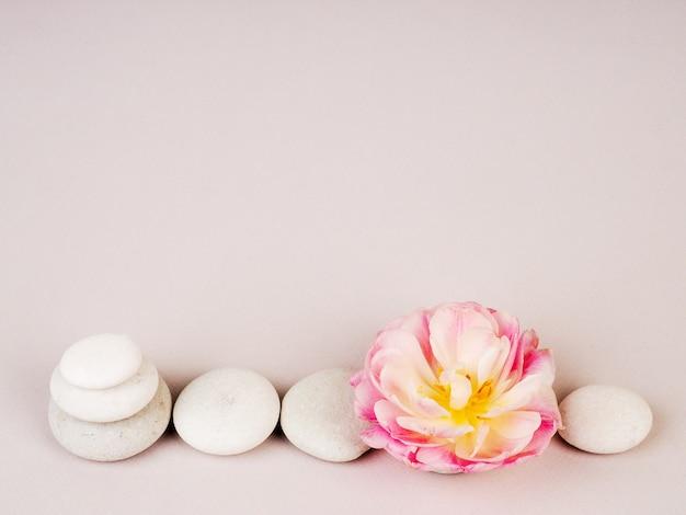 Spa martwa natura z kamieniami zen i kwiatem