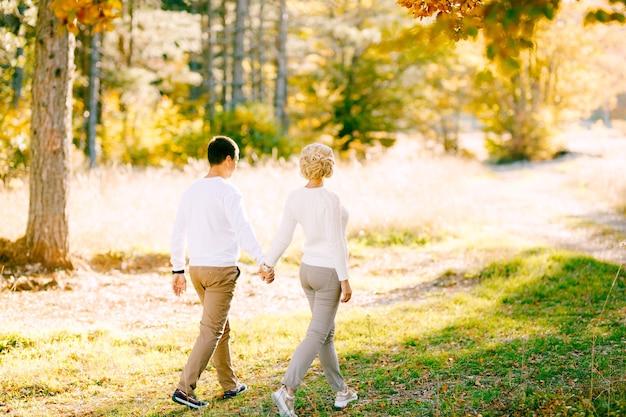 Spacer mężczyzny i kobiety, trzymając się za ręce w jesień las widok z tyłu