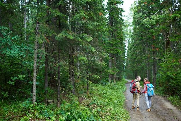 Spacerując po lesie