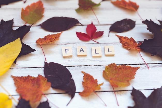 Spada słowo i liście na drewnianej desce, biały tło.