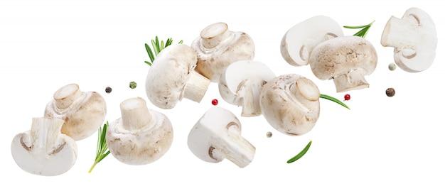 Spadające grzyby kolekcja, pieczarki na białym tle