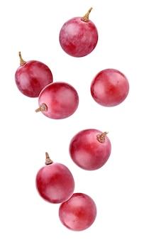 Spadające Winogrona Na Białym Tle Na Białym Tle Ze ścieżką Przycinającą. Całe Jagody W Powietrzu. Premium Zdjęcia