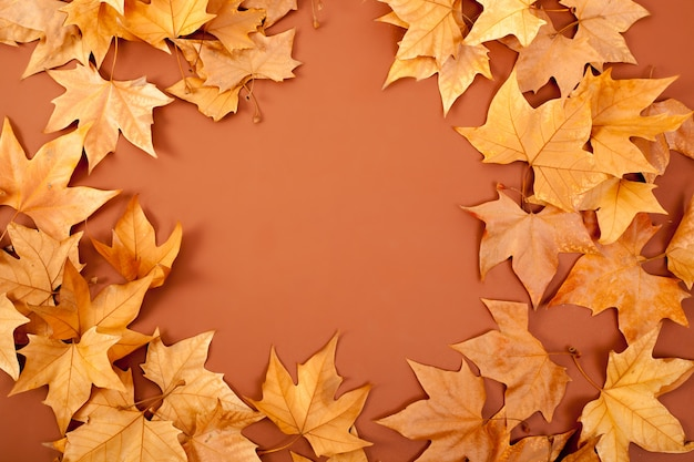 Spadek jesienią dired pozostawia granicy sławy na brązowy
