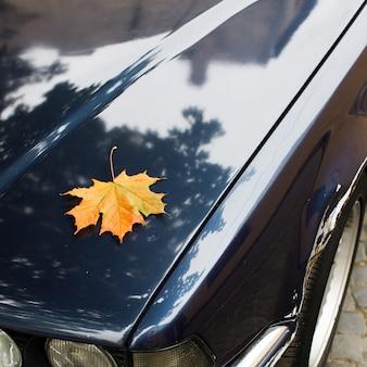 Spadły żółty liść klonu leżący na masce samochodu. sezon jesienny