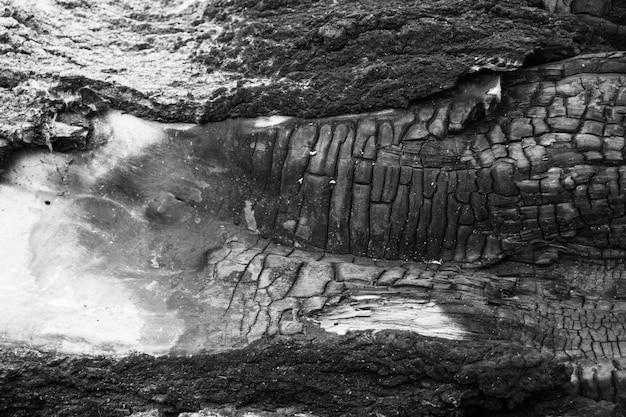 Spalone drewniane tekstury tła. szorstka czarna powierzchnia drewna spowodowana palącym się ogniem. ciemny materiał wykonany z węgla lub węgla drzewnego.