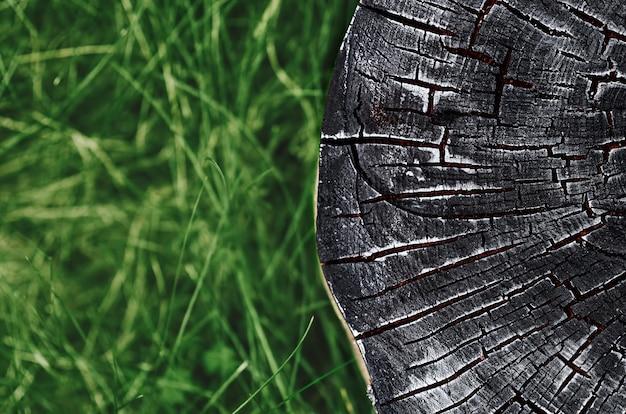 Spalone drewno tekstury na tle zamazanej zielonej trawy
