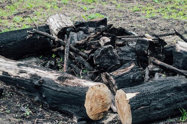 Spalone drewno tekstury, węgle. konsekwencje pożaru lasu.