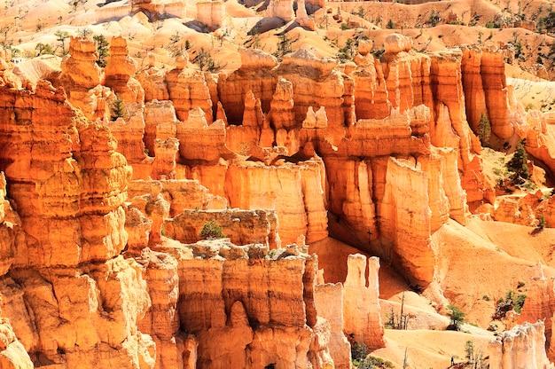 Spektakularne skalne wieże hoodoo w bryce canyon, utah, usa