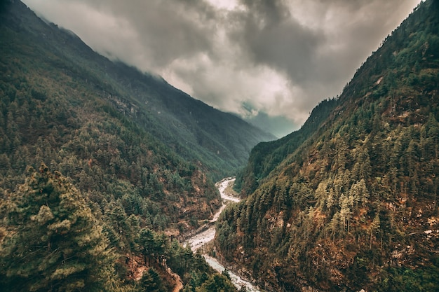 Spektakularny krajobraz, gęste lasy iglaste i górska rzeka w kanionie himalajów. trekking everest base camp w parku narodowym sagarmatha w północno-wschodnim nepalu.
