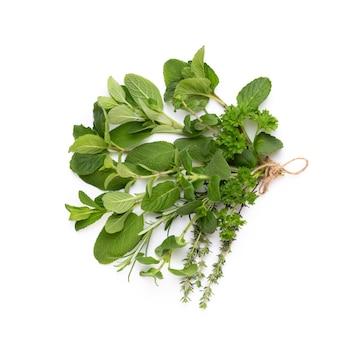 Spice ziołowe liście i papryka chili na białym tle. wzór warzyw. kwiaty i warzywa na białym tle. widok z góry, płaski układ.