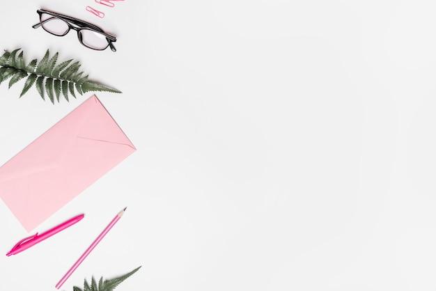 Spinacz; okulary; paproć; koperta; pióro i ołówek na białym tle