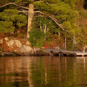 Spławowy dok przy linią brzegową w jeziorze drewna, ontario