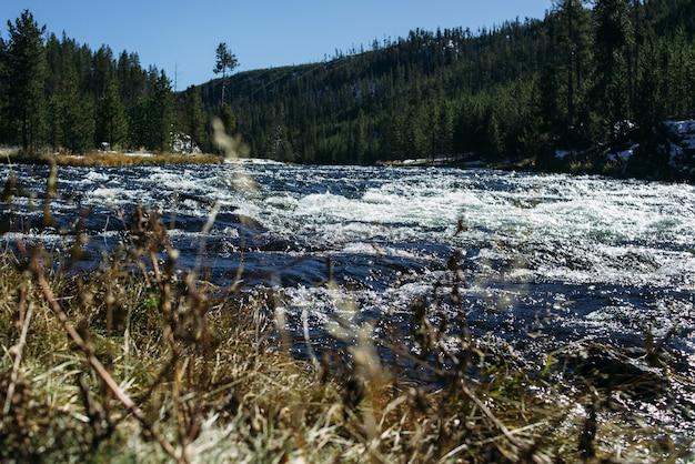Spływa silny pot górskiej rzeki o niebieskiej wodzie i białej pianie.